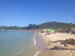 Η παραλία στο Παλιούρι, μπροστά από το Ξενία Φωτ. Σοφία Χριστοφορίδου